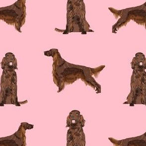 irish setter simple dog breed fabric pink