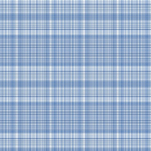 Plaid 1 in Blues and White