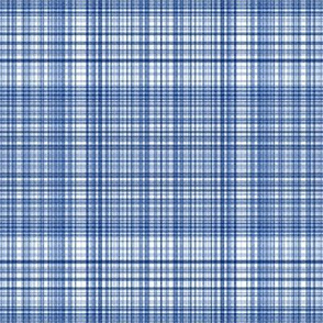 Plaid 2 in Blues and White