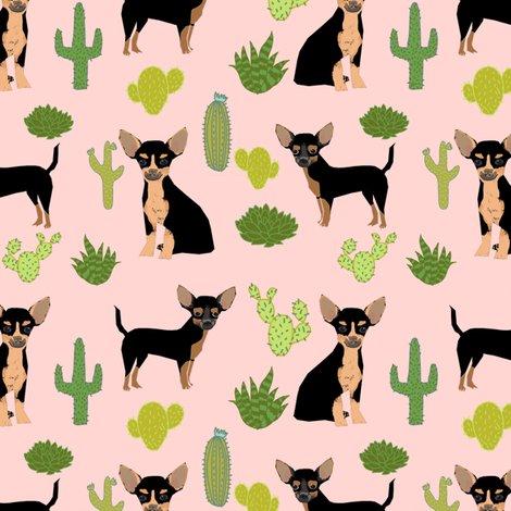 Rchihuahua-bt-cactus_shop_preview