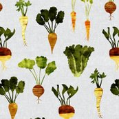 Rrooted-veggies-on-darker-grey-texture-04_shop_thumb