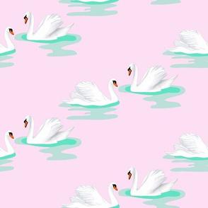 Swan Lake pink