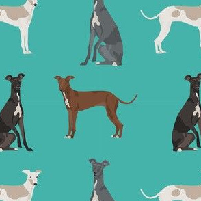 italian greyhound simple  dog breed fabric turquoise