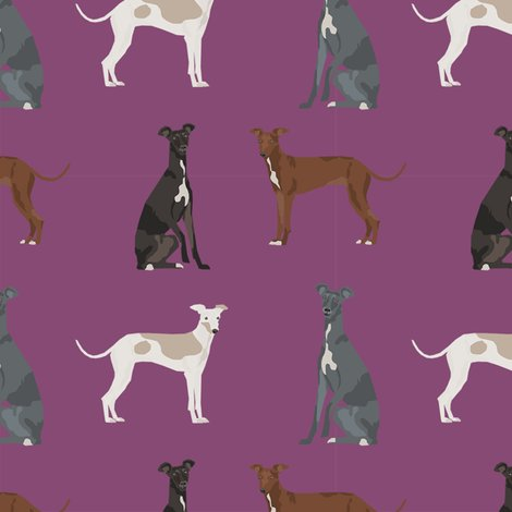 Rritalian-greyhound-simple-3_shop_preview