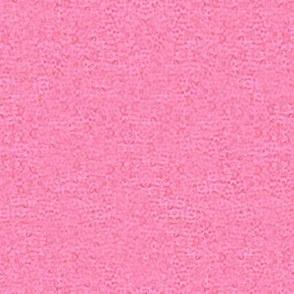 Pink Zinnia Texture
