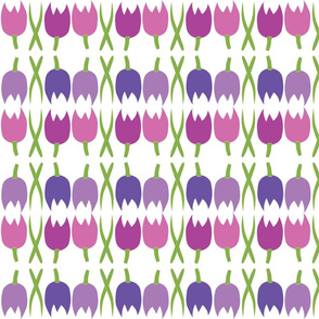 Tulips in Purples