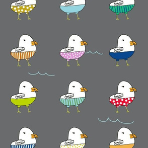 Seagulls in Shorts-Gray
