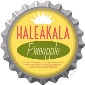 Soda Nation Pillow Panel (Haleakala National Park) || United States America parks typography bottle cap bottlecap pop travel summer vacation road trip home decor Hawaii volcano pineapple