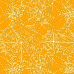 Spider Web // Orange