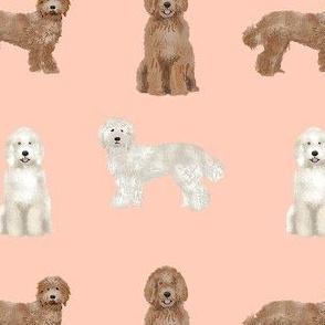 labradoodle simple unique dog breed fabric blush