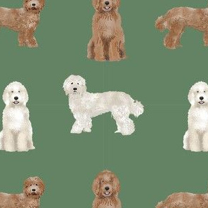 labradoodle simple unique dog breed fabric green