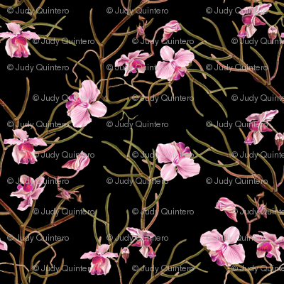 "4"" Pink Orchids - Black"