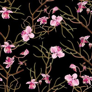"8"" Pink Orchids - Black"