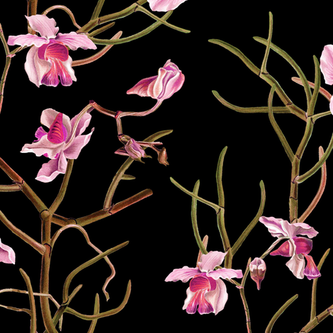 """14"""" Pink Orchids - Black fabric by shopcabin on Spoonflower - custom fabric"""