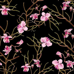"14"" Pink Orchids - Black"