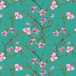 """4"""" Pink Orchids - Aqua Green"""