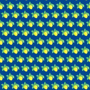Little Lemon Lulu on blue