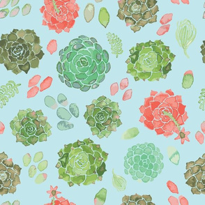 watercolor succulent aqua
