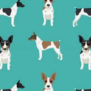 Rat Terrier simple dog breed fabric turquoise
