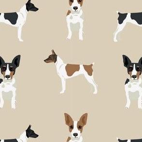 Rat Terrier simple dog breed fabric tan