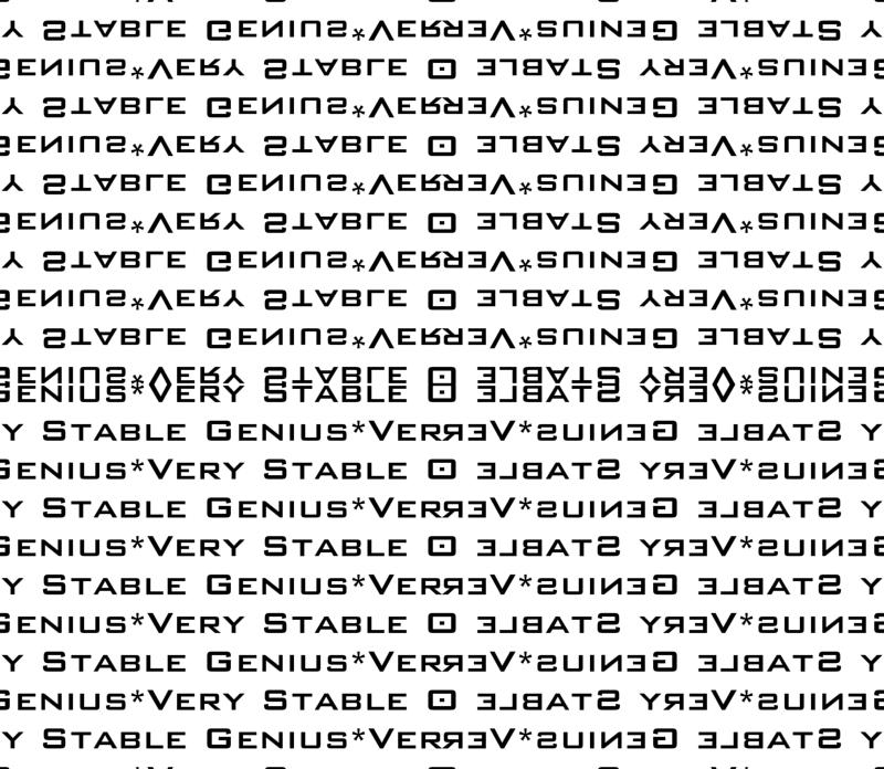 c50b8de5e44c 17-01S Very Stable Genius Bold Small Words Black White Trump