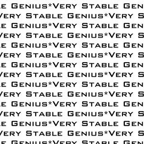 17-01S Very Stable Genius Bold Small Words Black White Trump || Low volume gray