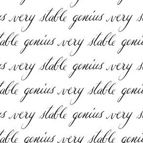 17-01Q Very Stable Genius Calligraphy Gray Grey Black White Words Trump  low volume words font hand written _ Miss Chiff Designs