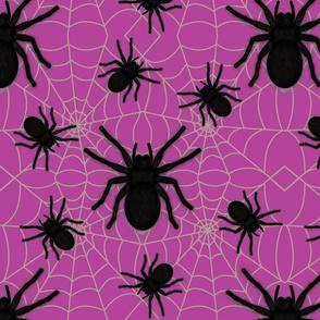 big hairy spider pink