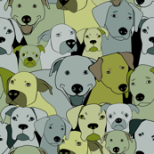 Dogs are compassionate green/yellow