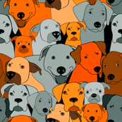 Dogs are compassionate orange