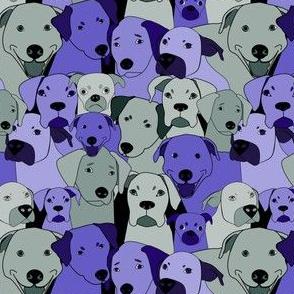 Dogs are compassionate purple