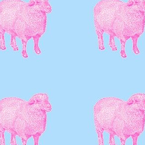 Pink Sheep Nursery Decor