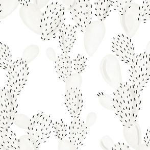 paddle cactus // f1f0ea