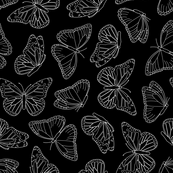Elegant Butterfly Black