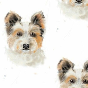 Frisky pup