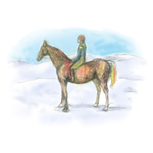 James horse snow