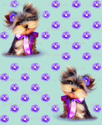 Yorkie Violet turquoise S