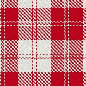 Erskine (Red) Tartan // Large