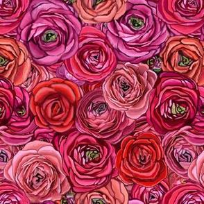 Ranunculus red & Pink floral // red Rose // pink rose  //Ranunculus flower // Floral //