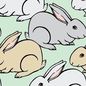 Bunnies Galore