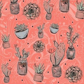 Roses succulents