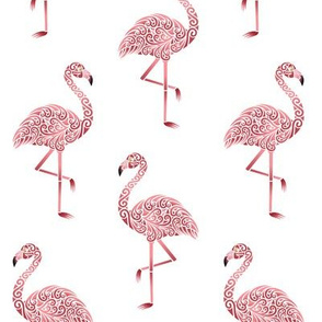 Funky Flamingos on White