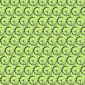 Swish in Watermelon Green