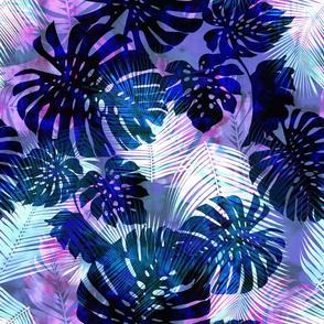 Motuu Blue