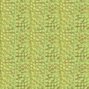 Square Dot-Lime Sienna