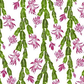 Christmas Cactus - hiking cranberry, lavender, olive and green