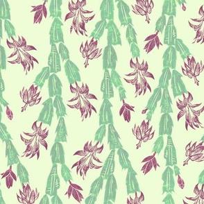 Christmas cactus - alexandrite