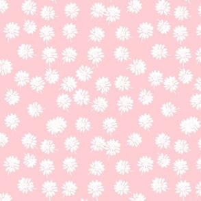 Dandi Pink