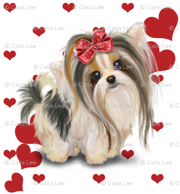 Biewer/Parti/Yorkie white and hearts M