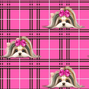 Parti-Biewer-Yorkie Plaid hot pink M